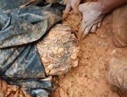 Dua Korban Longsor Walbar Luwu Ditemukan Dalam Keadaan Tidak Bernyawa